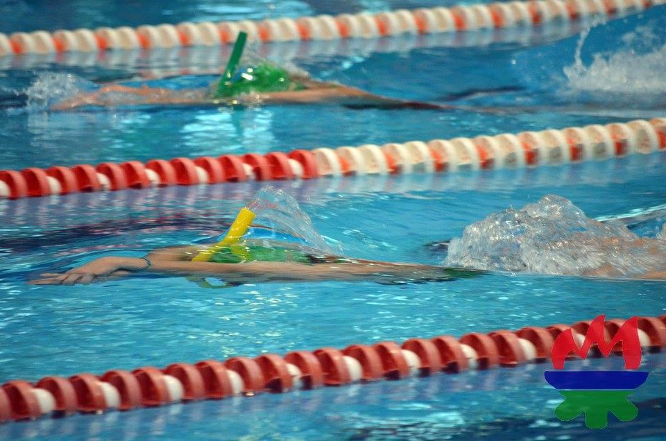 Galer a de fotos de nataci n con aletas agrupaci n for Aletas natacion piscina